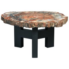 Ado Chale Rare Coffee Table in Petrified Wood and Steel, Belgium 1968