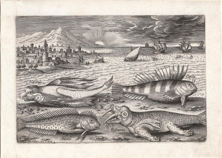 """Adriaen Collaert Animal Print - """"Piscum Vivae Icones,"""" Antique Engraving of Fish, Marine Creatures, Seascape"""