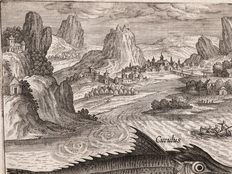 Antique engraving on laid paper uses dramatic perspective to highlight a series of fish and marine creature set against a fantastical, elaborate seascape; a galleon ship sails off the coast of a medieval town set within an exaggeratedly steep hills.