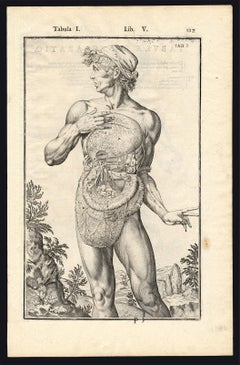2 anatomical prints - Male abdominal by Spigelius - Engraving - 17th century
