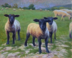 """""""Cotswold Sheep"""", Oil Painting"""