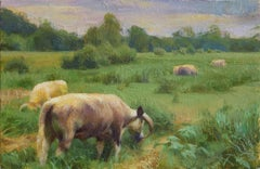 """Oxford Cattle"", Oil Painting"