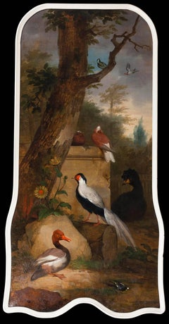 Extraordinary 18th Century Oil Painting of Ornamental Birds in a Landscape