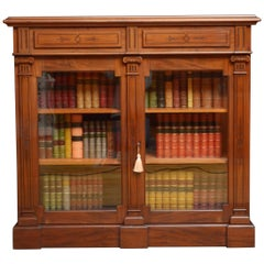Aesthetic Movement Mahogany Library Cabinet