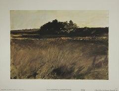 Salt Marshes-Poster. Copyright 1969. Aaron Ashley, Inc.