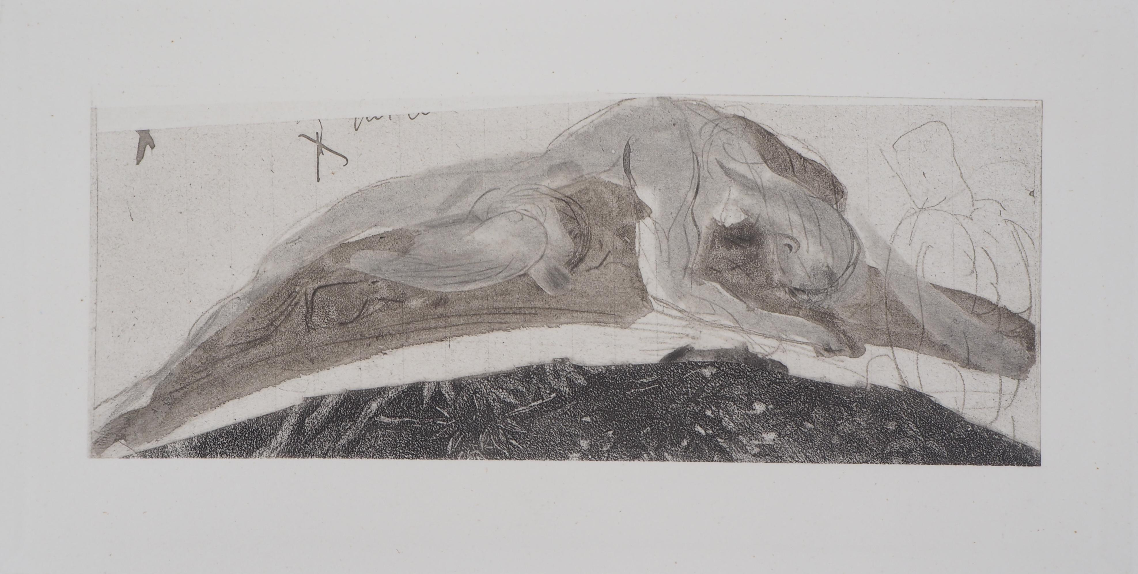 Attached to the Rock - Etching, 1897