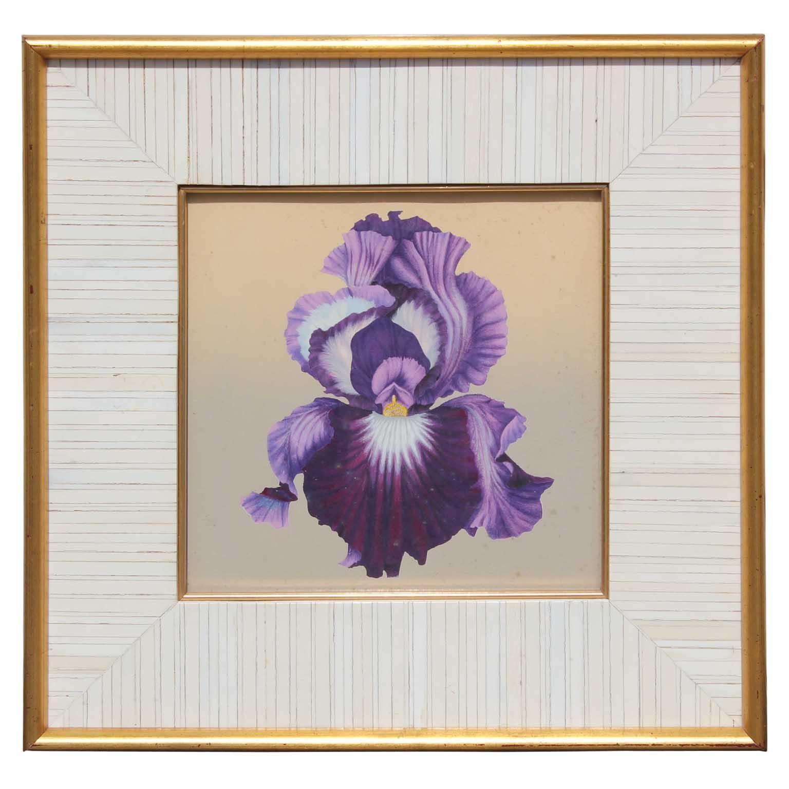 Purple Iris Still Life