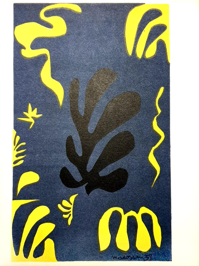 Henri Matisse (After) - Plants - Lithograph - Print by (after) Henri Matisse