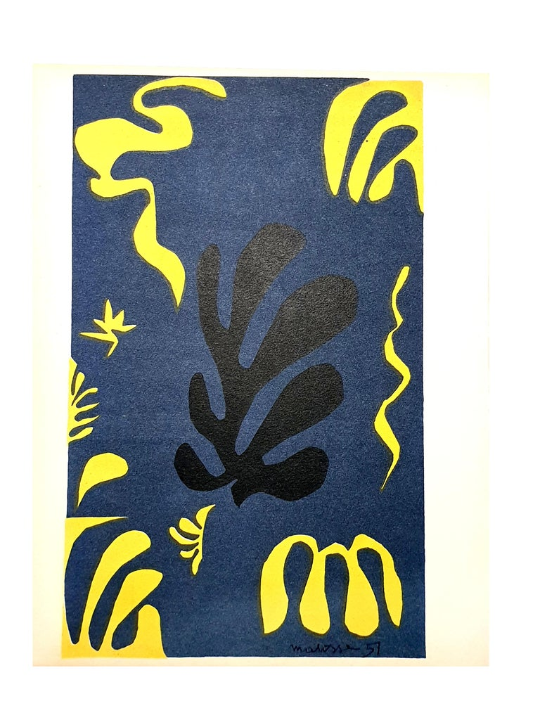 (after) Henri Matisse Figurative Print - Henri Matisse (After) - Plants - Lithograph