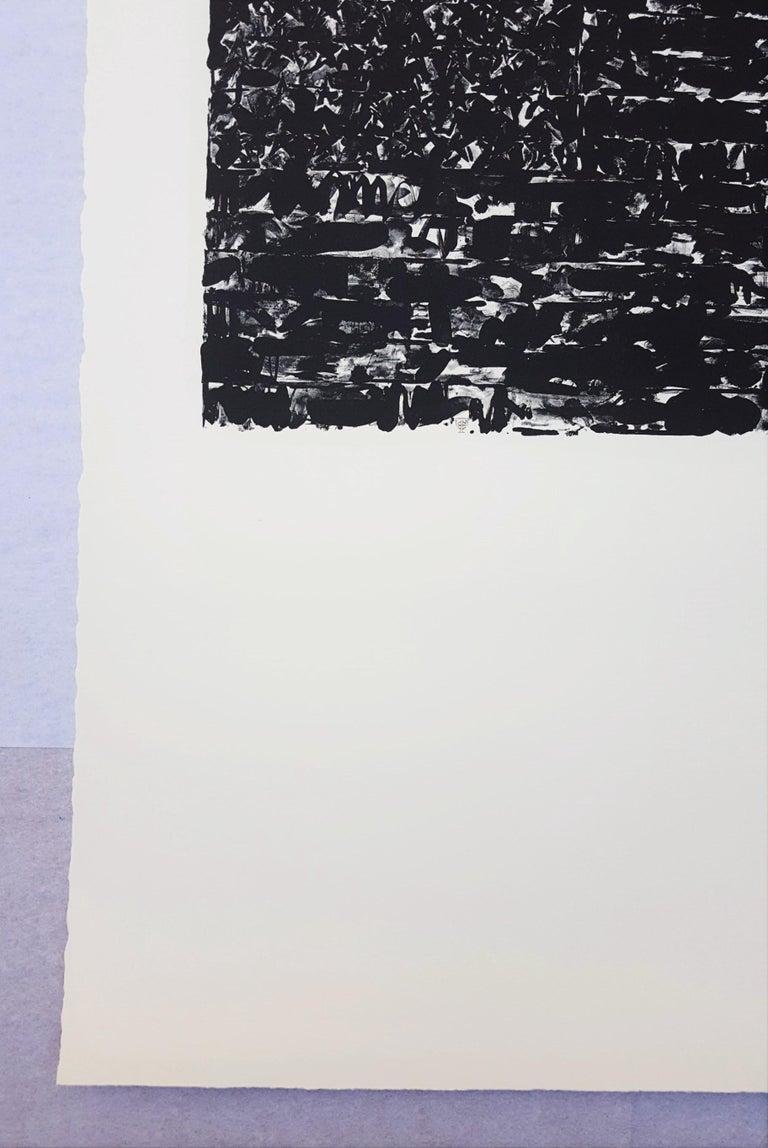 Flag I - Pop Art Print by (After) Jasper Johns