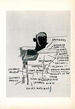 Basquiat Anatomy Annina Nosei Gallery 1982 (announcement)