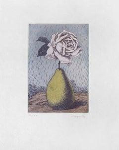 RENÉ MAGRITTE - Poire et Rose - Limited ed. Etching & Aquatint  Surrealism