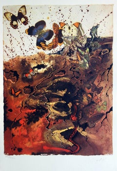 Butterfly suite : Auvergne - heliogravure and lithograph - 1969