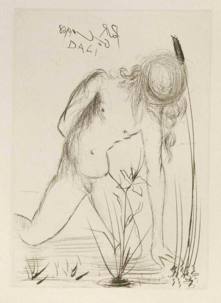 Narcissus - Print by (after) Salvador Dali