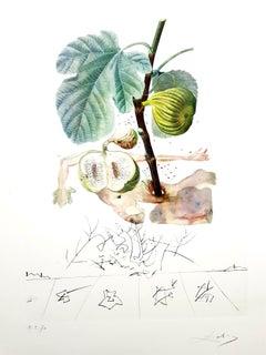 Salvador Dali - Fig Man - Original Hand-Signed Lithograph