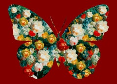 Butterfly Red - Botanical Butterfly / Red Silhouette / Digital Print