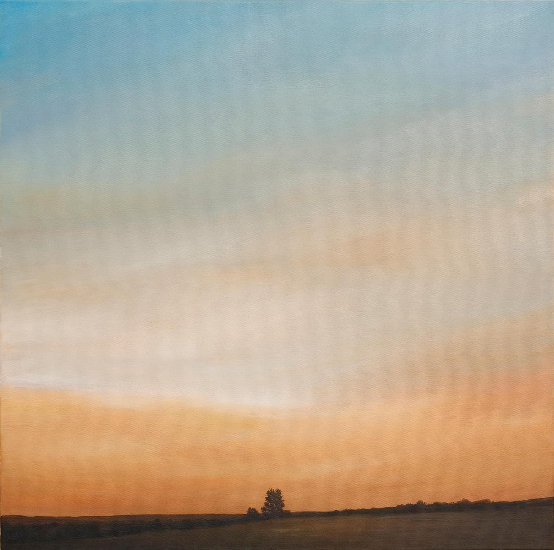 """""""Looking North Overlook"""", Contemporary Oil and Acrylic Landscape Painting Framed"""