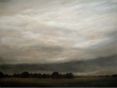 Meadow After the Rain - Serene Landscape with Expansive Stormy Sky