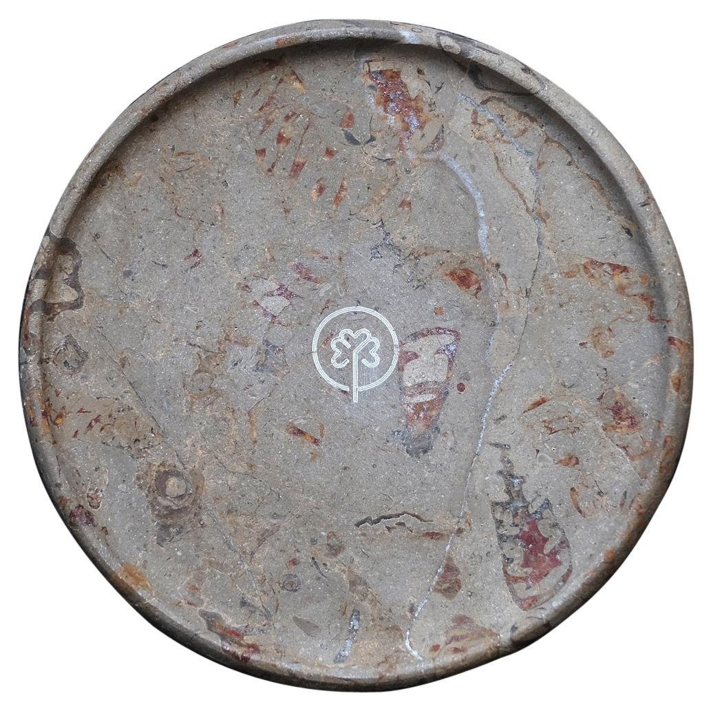 Aina Contemporary Jurassic Fossil Marble Aqua Plate for Ricard Camarena Rest