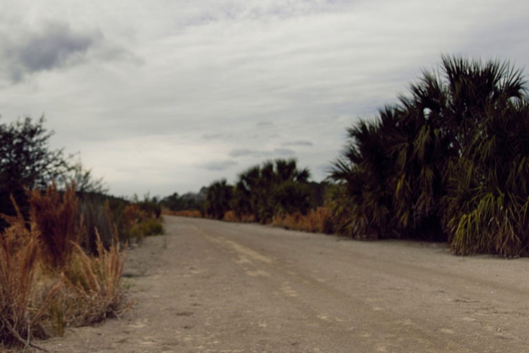 This is a large scale photograph of a female nude. An enchanting figure trespasses under looming clouds, through a desolate, apocalyptic terrain. She surveys a long dirt road, her hand to her forehead. Marsh grasses and palmetto trees line the