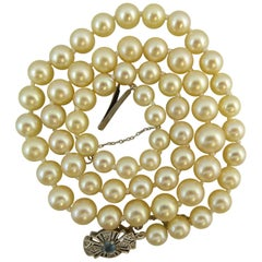 Akoya Cultured Pearl Single Row Necklace, Aquamarine Diamond Clasp, Pre-Owned