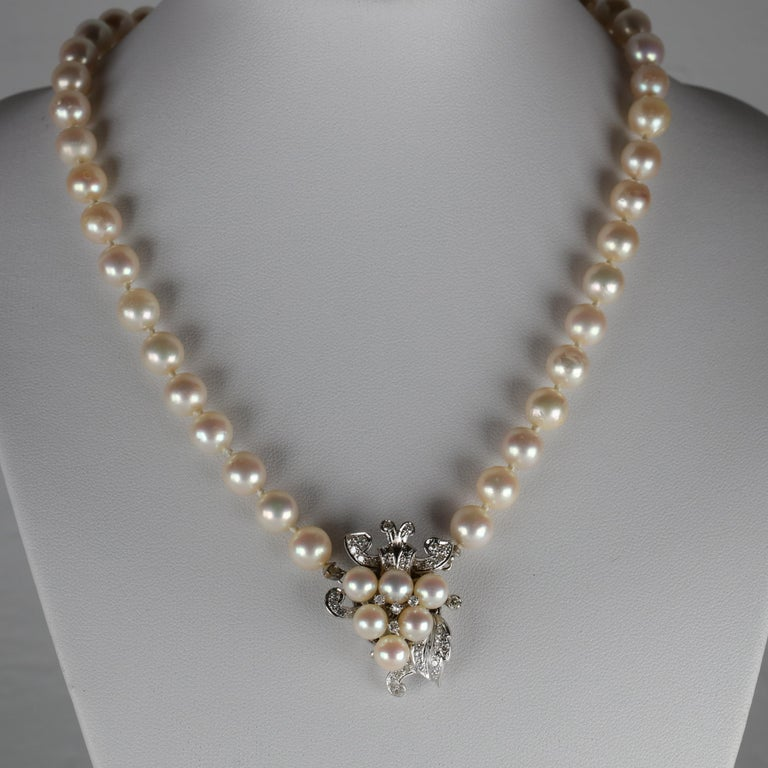 Forty-three (43) cultured saltwater Akoya pearls measuring between 8mm - 8.5mm comprise this 16.5