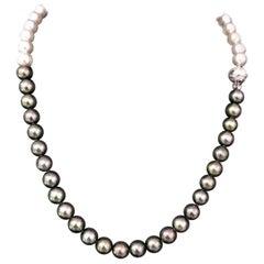 Akoya Pearl Diamond 14 Karat White Gold Necklace in Certified
