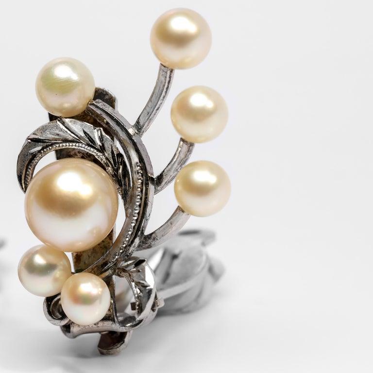 Women's Akoya Pearl Earrings Gump's Midcentury
