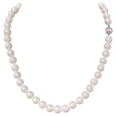 Akoya Pearl Necklace 14 Karat White Gold Certified