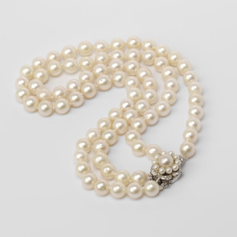 Bead Akoya Pearl Necklace Double Strand For Sale