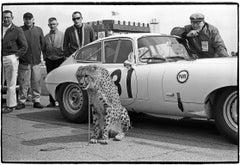 Alfred Momo & Jaguar