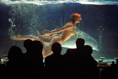 ' Cabaret Dolphin 1979 ' Oversize Limited Edition Archival Pigment Print