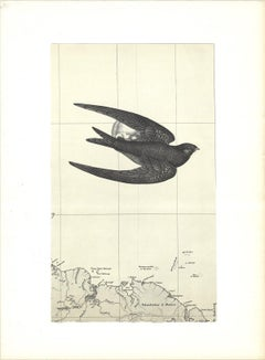 1969 Alain Le Yaouanc 'The Swallow' Expressionism Lithograph