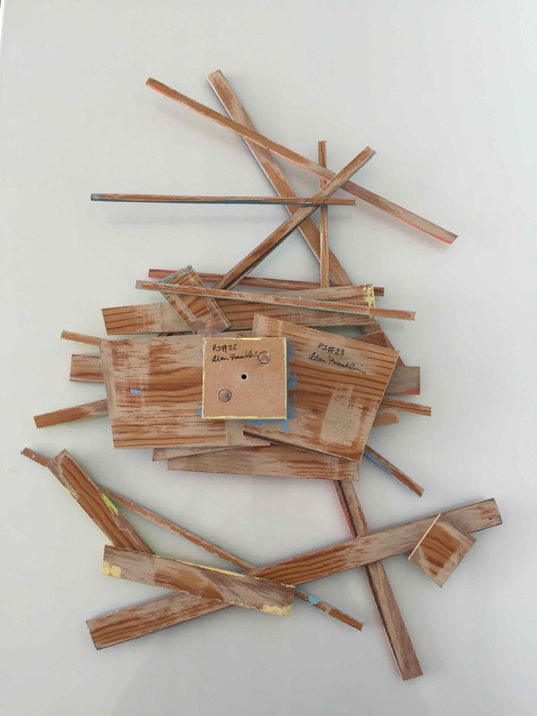 PS #23: Assemblage wall sculpture by Alan Franklin For Sale 5