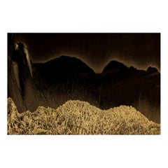 Albarran & Cabrera Contemporary Photography NYX #3 Gold Leaf Limited Edition