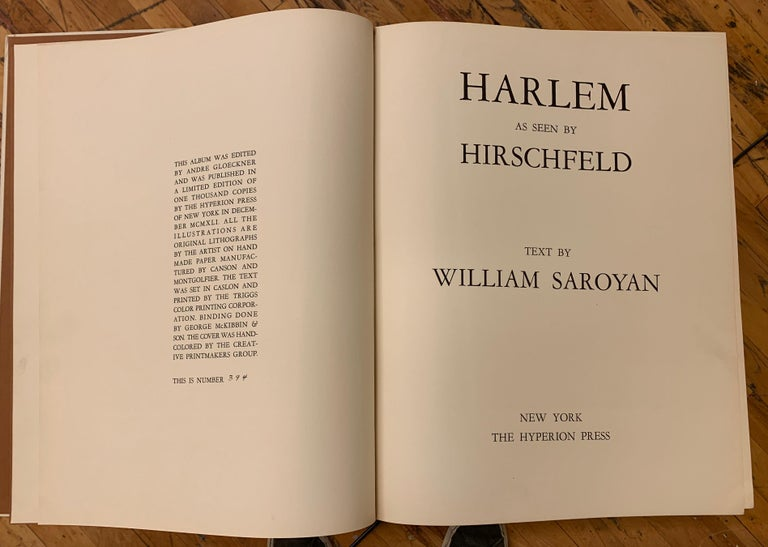 HARLEM AS SEEN BY HIRSCHFELD For Sale 11