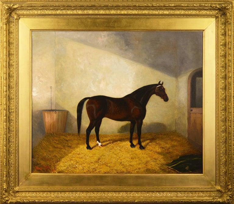 Albert Clark Animal Painting - A Bay Hunter