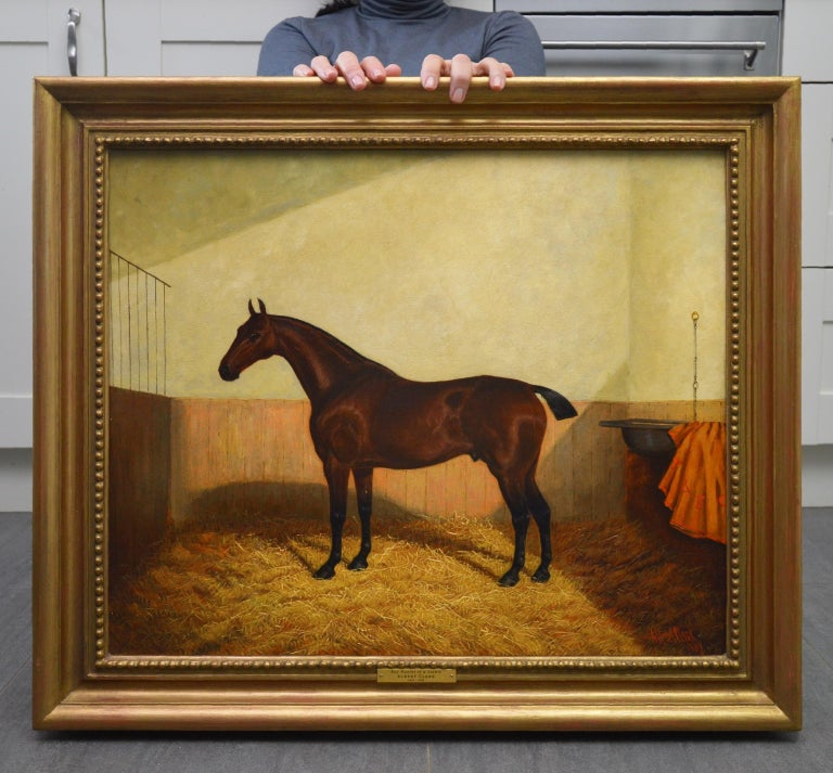 Bay Hunter in a Stable - 19th Century Equine Portrait Oil Painting  - Brown Portrait Painting by Albert Clark