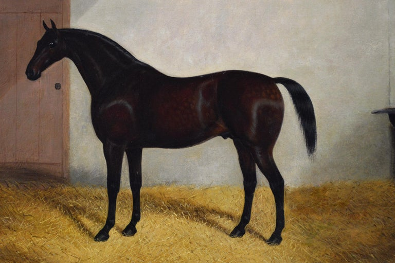 Sporting portrait oil painting of a horse in a stable - Victorian Painting by Albert Clark