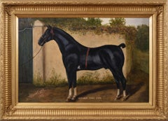Sporting portrait oil painting of a prize horse