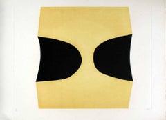 Bianchi e Neri I (Acetates) - Plate C - Alberto Burri - 1969