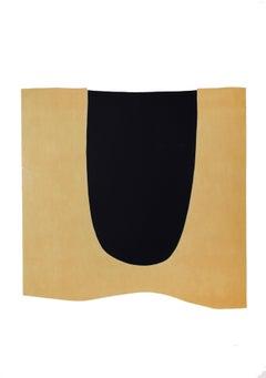 Bianchi e Neri I (Acetates) - Plate D - Alberto Burri - 1969