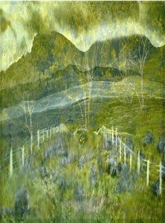 Double Exposure through Windshield – Albert Watson, Green, Landscape, Nature