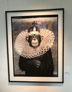 King Casey - iconic portrait of an chimpanzee as king
