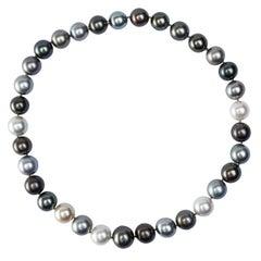 Alex Jona Multicolor South Sea Pearl Necklace