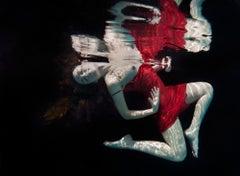 Adventure - underwater photograph - print on aluminum