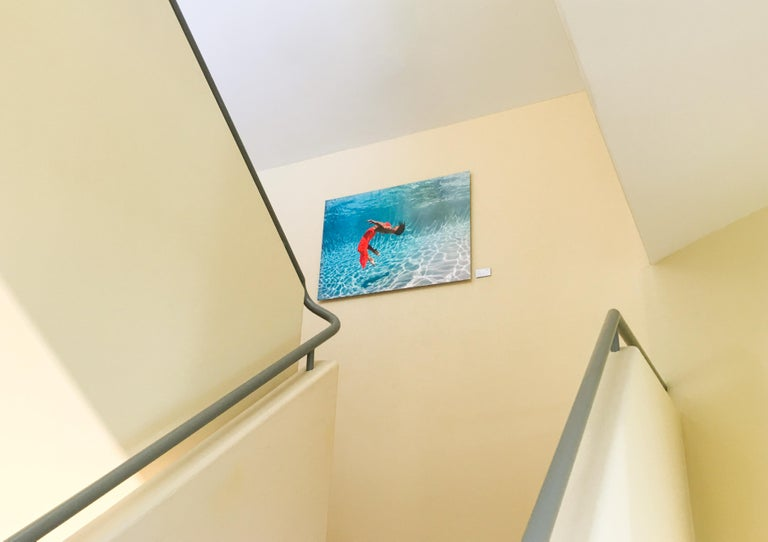 Flurry - underwater photograph - print on aluminum - Photograph by Alex Sher