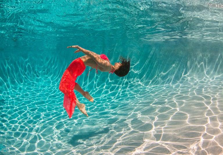 Alex Sher Color Photograph - Flurry - underwater photograph - print on aluminum