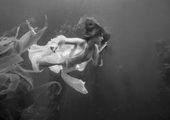 """Kelp Nymph"" Photography Print 24"" x 36"" inch Edition 2/24 by Alex Sher"