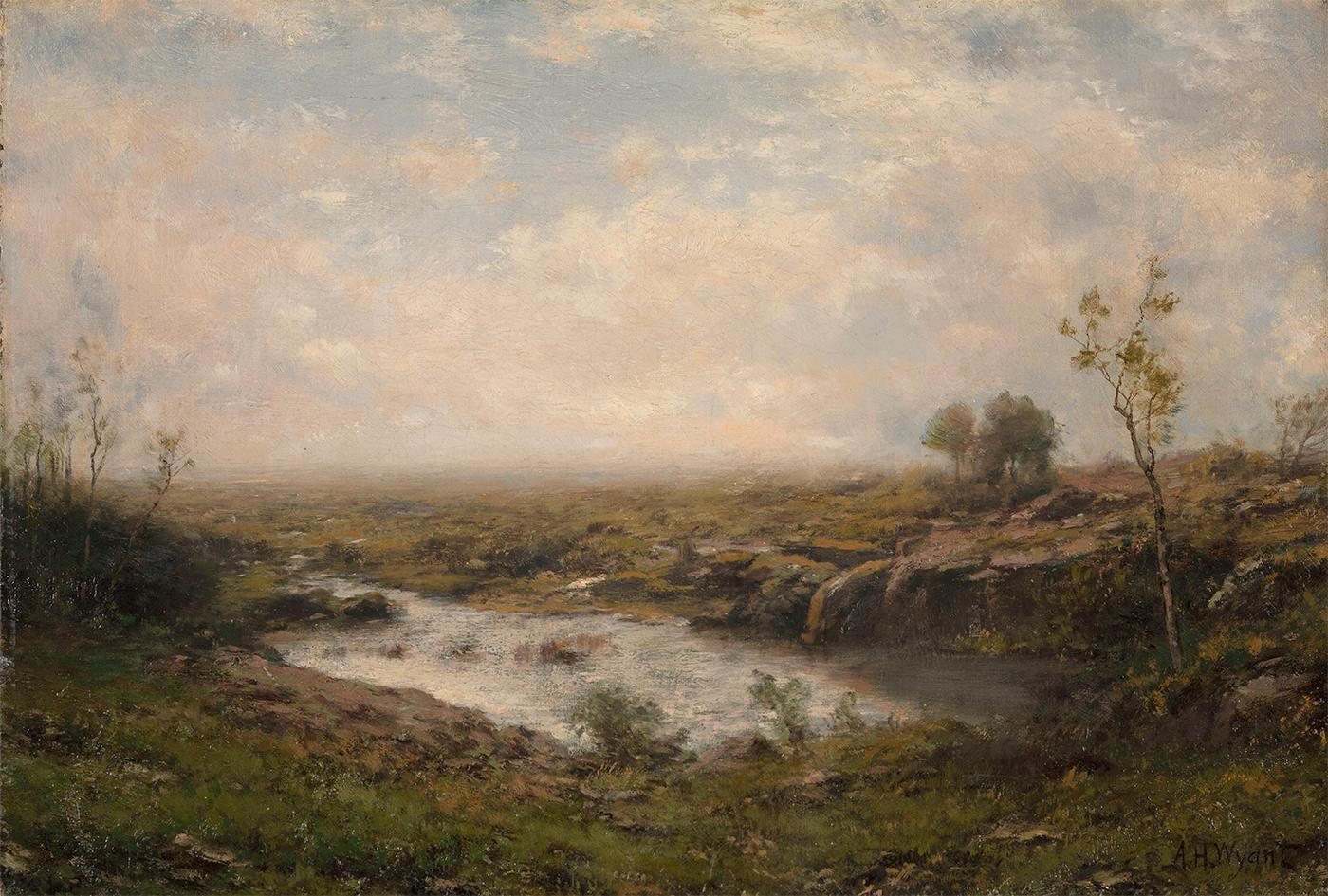 The Quiet Pond